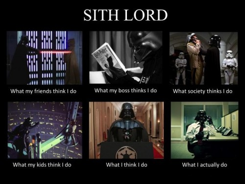 What my friends think I do what I actually do - Sith Lord
