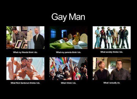 beagle gay bloodlines