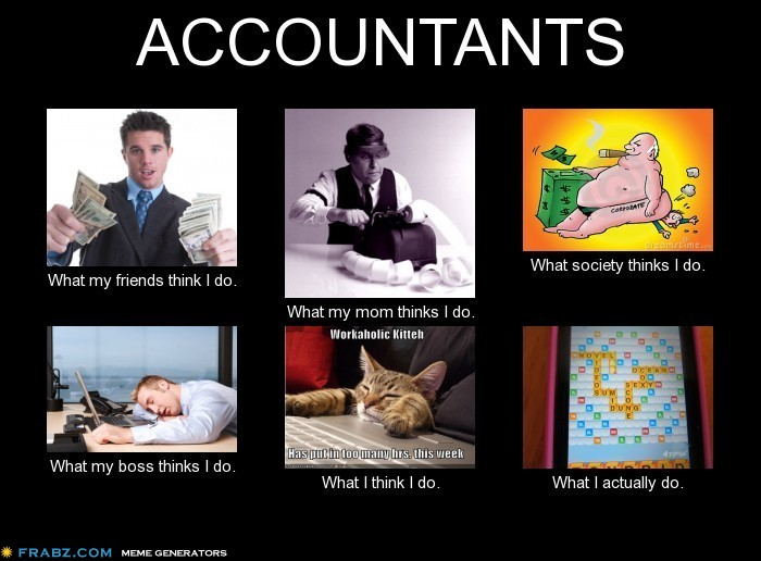What my friends think I do what I actually do - Accountants
