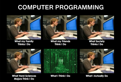 Programmer - What my friends think I do - what I actually do - Computer Programming