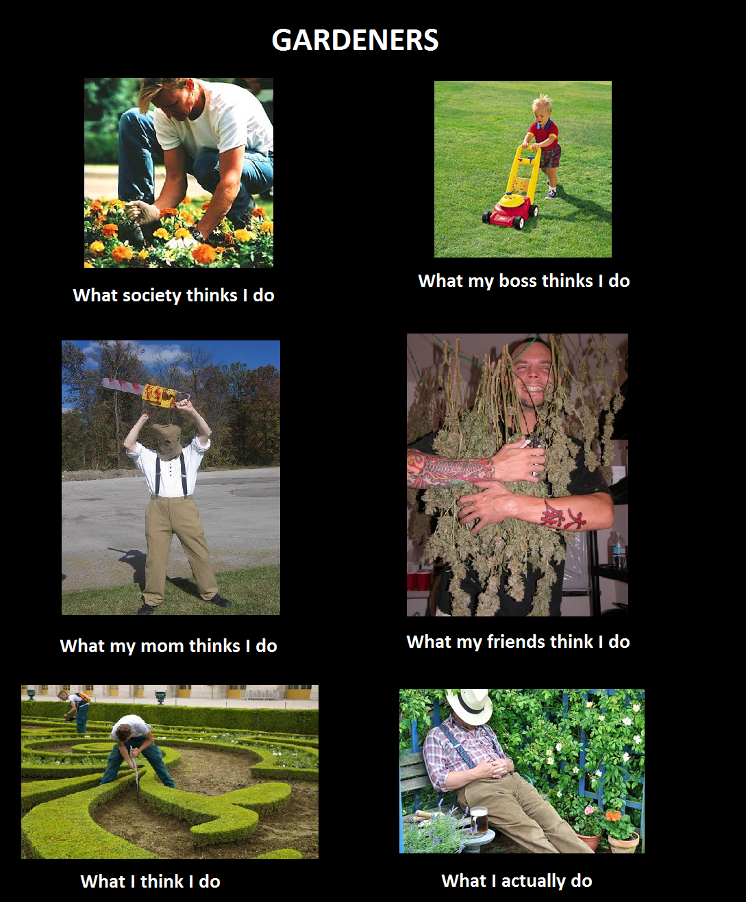 What my friends think I do what I actually do - Gardeners