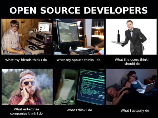 What my friends think I do - Open Source Developers