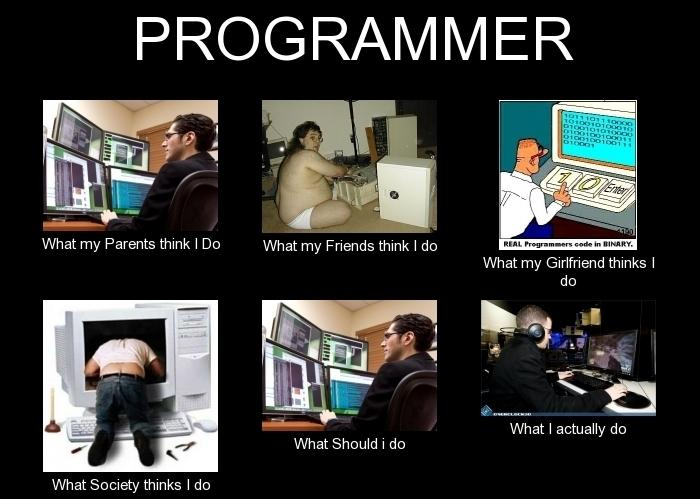 PROGRAMMER-What-my-Friends-think-I-do