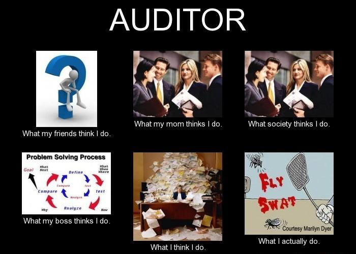 Auditor-What-my-Friends-think-I-do