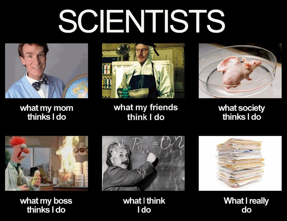 What-my-Friends-think-I-do-scientists